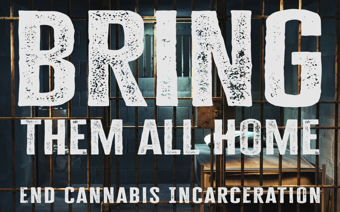 Green Reine Launches Bring Them All Home Campaign to End Cannabis Incarceration